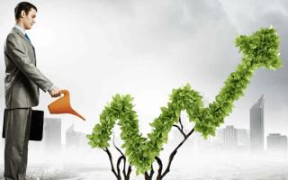 Основные направления инвестиционной деятельности