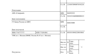 Платежное поручение енвд 2020 для ип