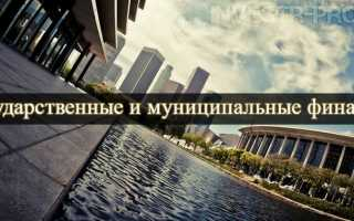 Государственные и муниципальные финансовые фонды