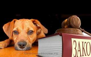 Закон свердловской области об административных правонарушениях