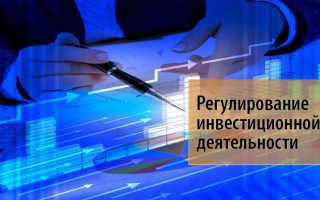 Государственный контроль за инвестиционной деятельностью