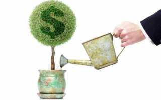 Срок окупаемости капитальных вложений показывает